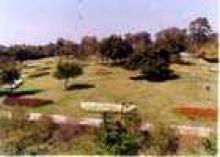 उद्यान चित्र 6